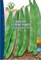 250g_fagiolo ramp. marconi b
