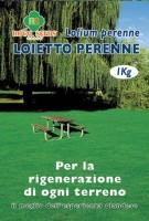 Loietto