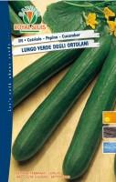 cetriolo lungo ortolani