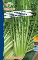cicoria cat. frastagliata