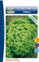 lattuga casabella