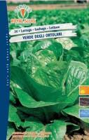 lattuga verde ortolani