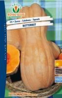 zucca butternut