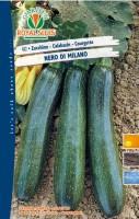 zucchino milano