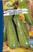 zucchino ortolana