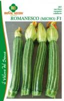 zucchino romanesco micho