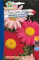 600732-PYRETRO MARGHERITA T